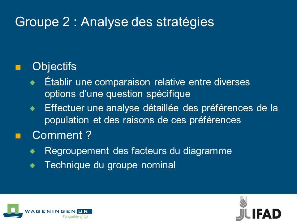 Groupe 2 : Analyse des stratégies Objectifs Établir une comparaison relative entre diverses options dune question spécifique Effectuer une analyse dét