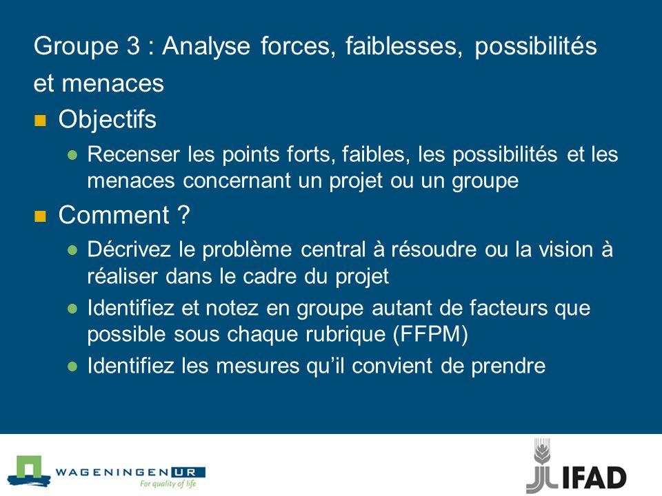 Groupe 3 : Analyse forces, faiblesses, possibilités et menaces Objectifs Recenser les points forts, faibles, les possibilités et les menaces concernan