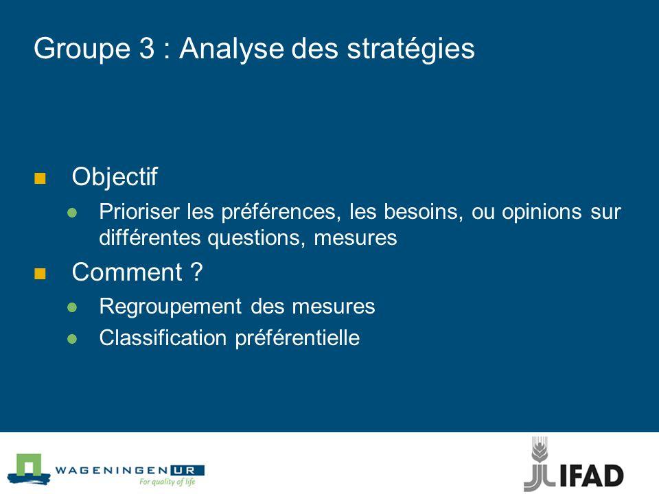 Groupe 3 : Analyse des stratégies Objectif Prioriser les préférences, les besoins, ou opinions sur différentes questions, mesures Comment ? Regroupeme