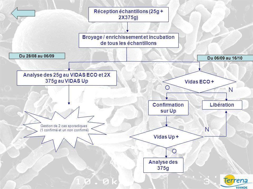 Réception échantillons (25g + 2X375g) Broyage / enrichissement et incubation de tous les échantillons O Confirmation sur Up Analyse des 375g Libération N Vidas Up + O N Du 28/08 au 06/09 Analyse des 25g au VIDAS ECO et 2X 375g au VIDAS Up Vidas ECO + Du 06/09 au 16/10 Gestion de 2 cas sporadiques (1 confirmé et un non confirmé)