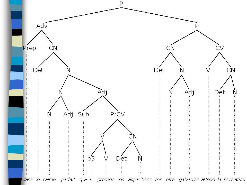 Présentation : Ce que ça nest pas Pas une théorie : –Un moyen de tester et de confirmer / infirmer des propositions –Permet de dégager une théorie Pas une formalisation : –Pas réductible à un arbre, ni à des règles X Y.Z Pas une analyse syntagmatique : –Ne tient pas compte de lagencement des morphèmes dans une langue, mais des structures syntaxiques