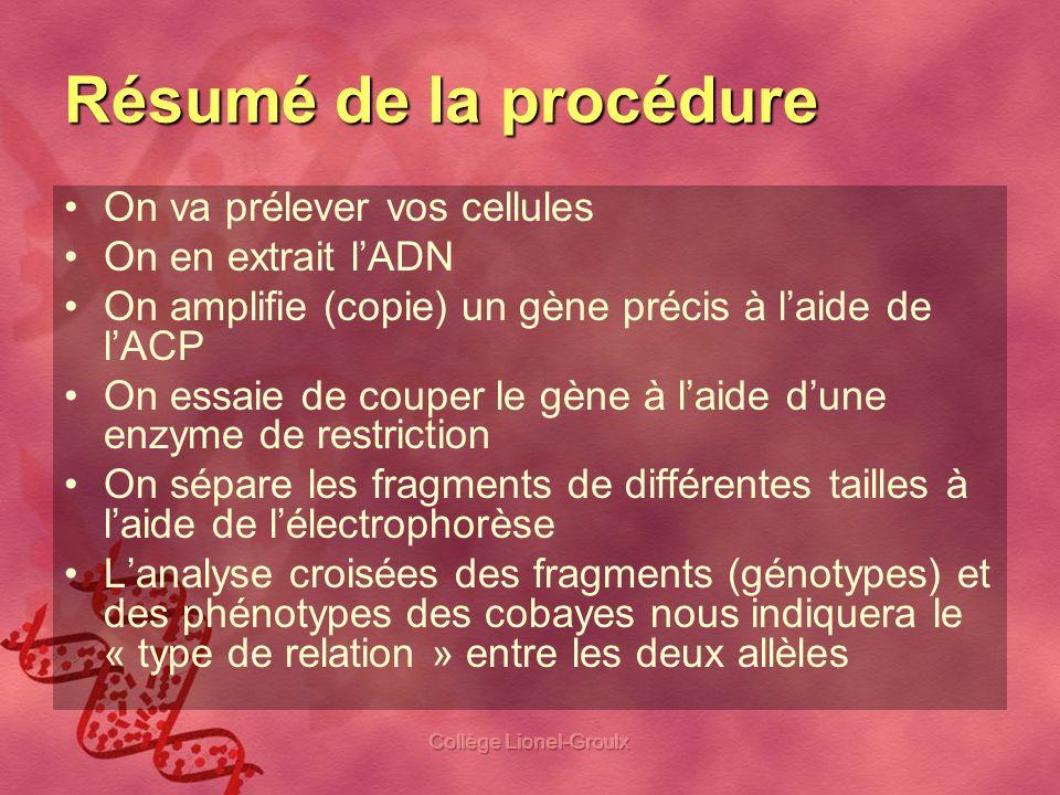 Collège Lionel-Groulx Résumé de la procédure On va prélever vos cellules On en extrait lADN On amplifie (copie) un gène précis à laide de lACP On essa