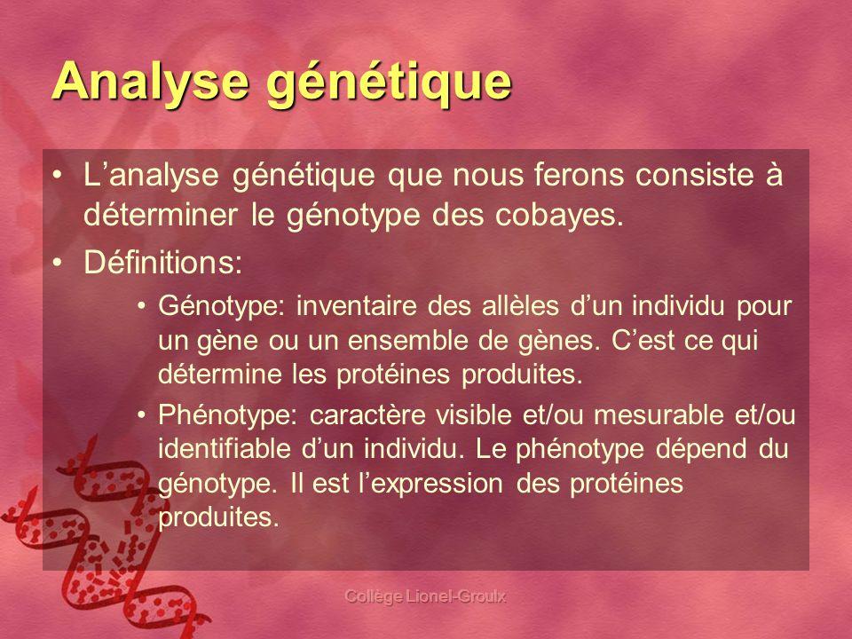 Collège Lionel-Groulx Analyse génétique Autres définitions: Allèle dominant vs récessif: dans une paire dallèle, il arrive que lexpression dun allèle (dominant) masque lexpression de lautre (récessif) Dominance incomplète/codominance: il arrive parfois que lexpression de deux allèles différents donne un nouveau phénotype.