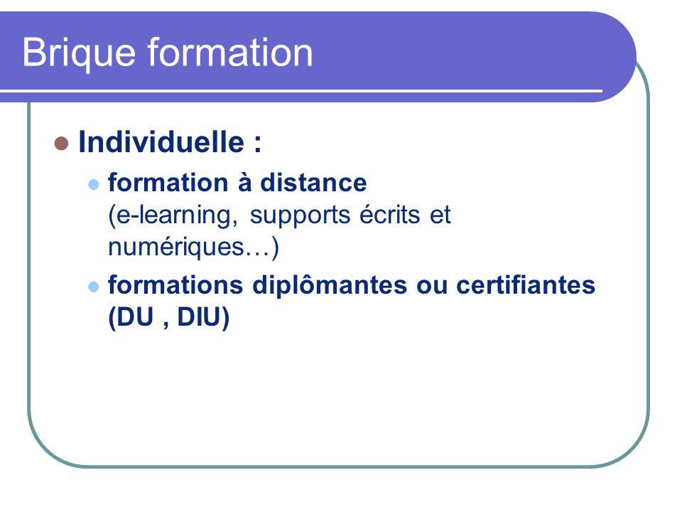 Brique formation Individuelle : formation à distance (e-learning, supports écrits et numériques…) formations diplômantes ou certifiantes (DU, DIU)