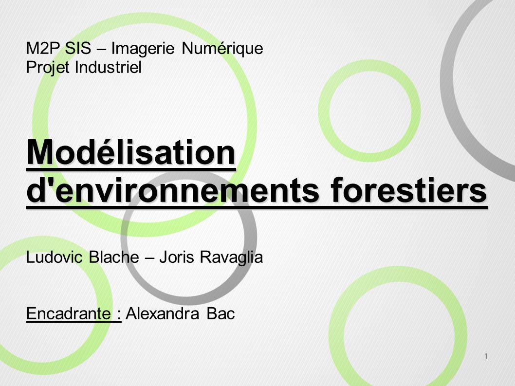 1 M2P SIS – Imagerie Numérique Projet Industriel Modélisation d'environnements forestiers Ludovic Blache – Joris Ravaglia Encadrante : Alexandra Bac