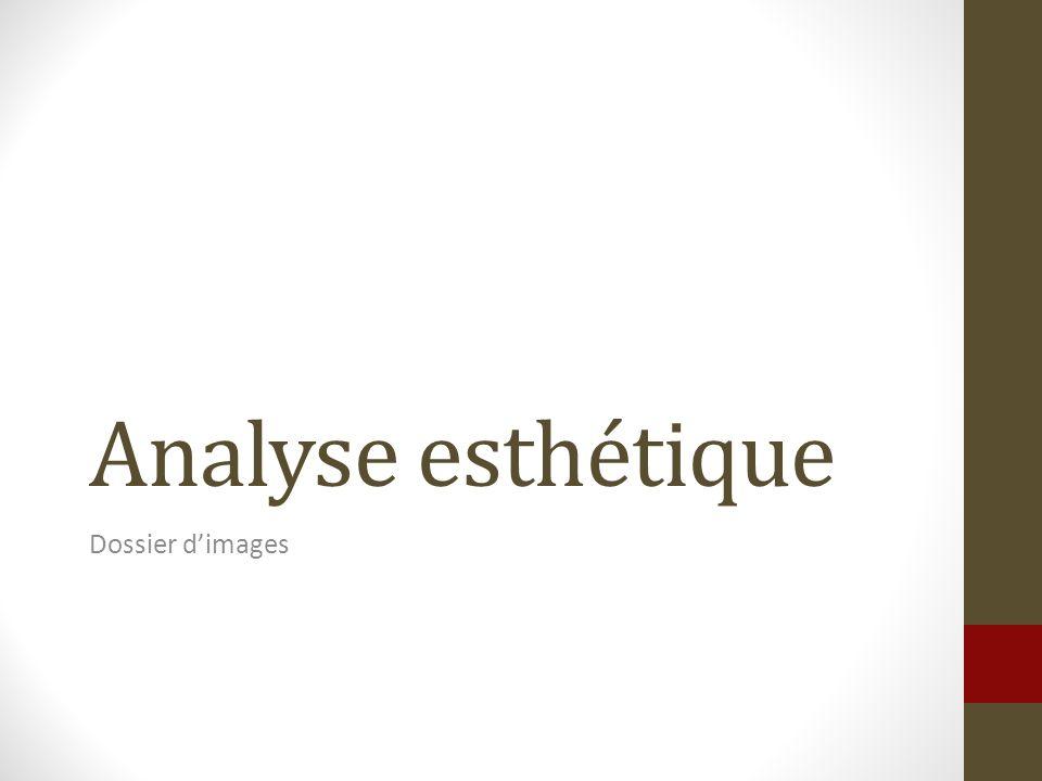 Analyse esthétique Dossier dimages