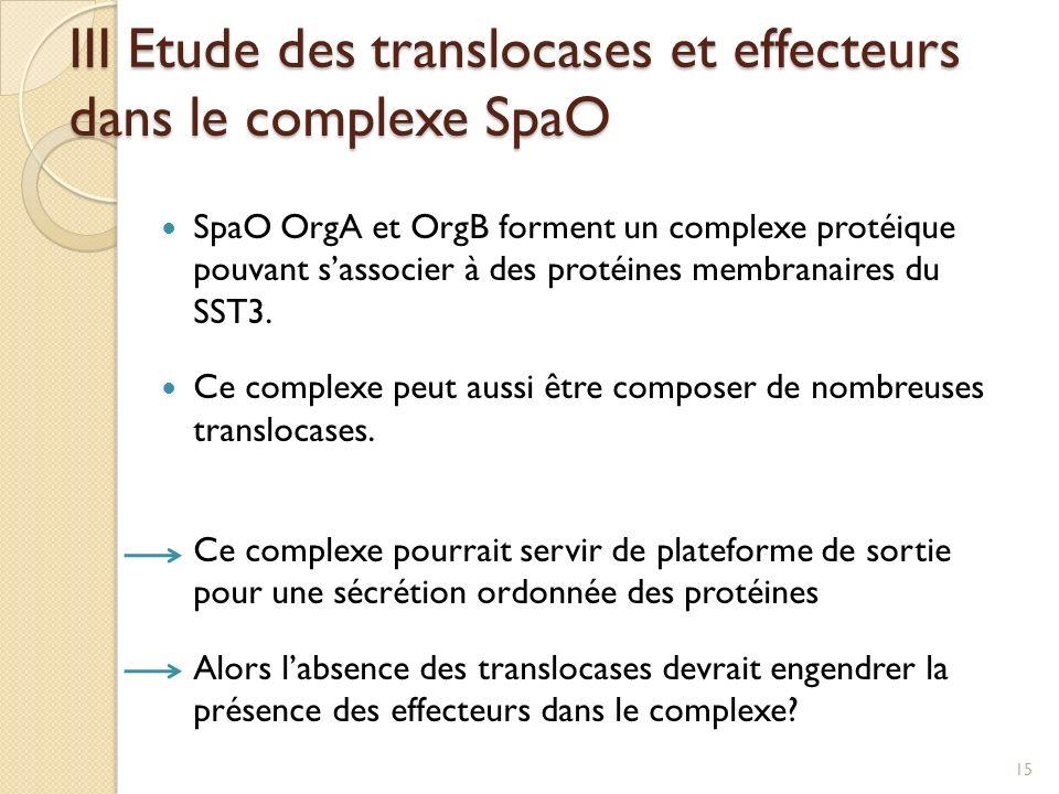 SpaO OrgA et OrgB forment un complexe protéique pouvant sassocier à des protéines membranaires du SST3. Ce complexe peut aussi être composer de nombre