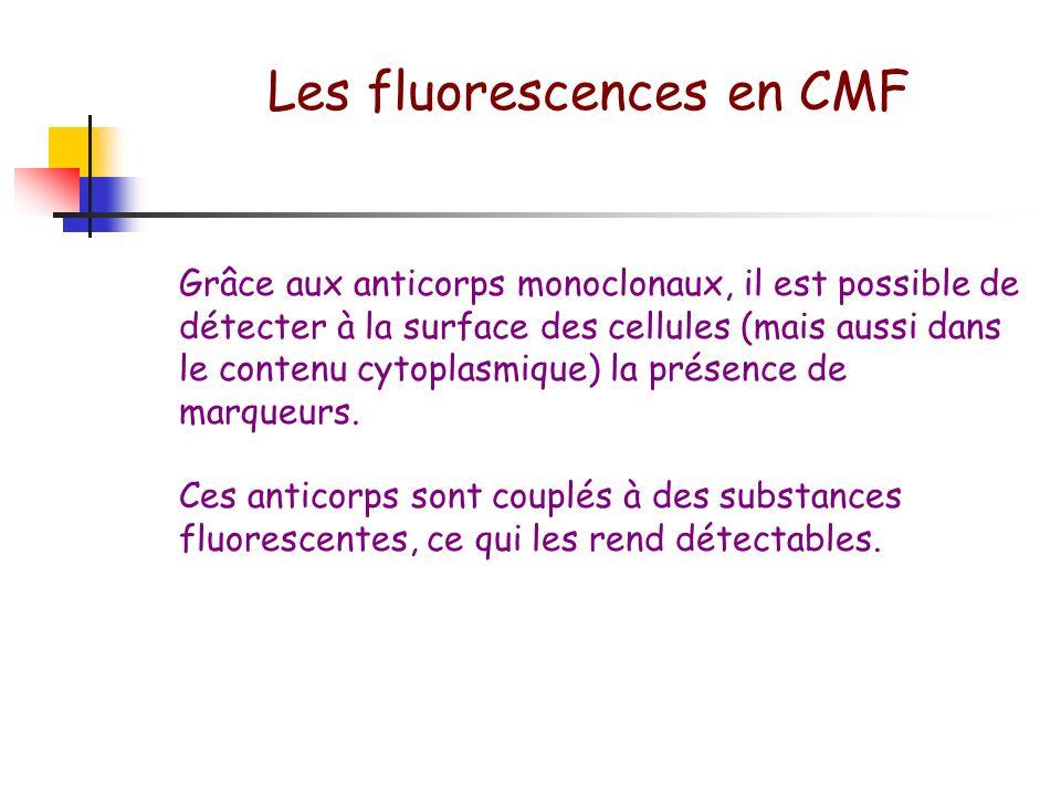 Répartition cellulaire en CMF