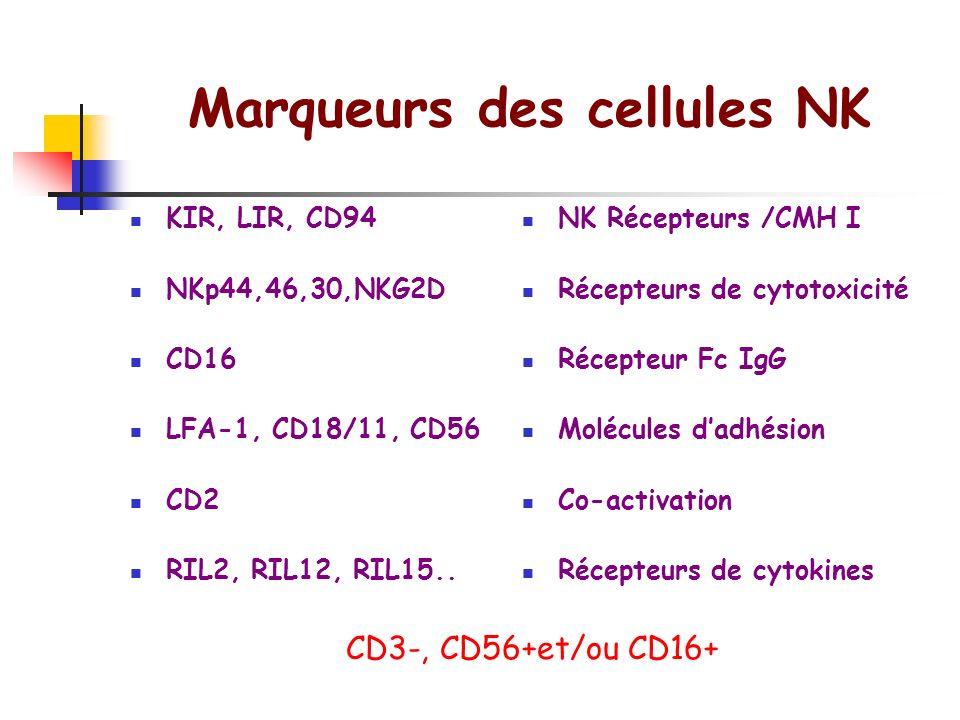 Caractérisation fonctionnelle des lymphocytes lymphocytes B naïfs (CD27 -, IgM +, IgD +) lymphocytes B mémoires (CD27 +, IgM - IgD -) lymphocytes B im