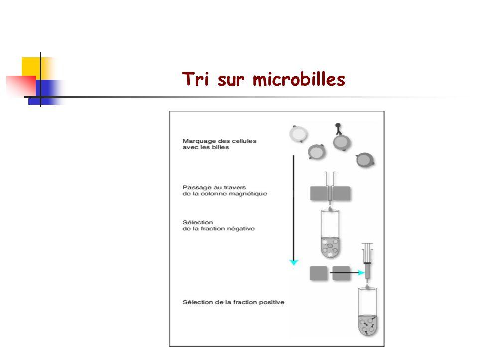 Méthodes de séparation des lymphocytes FACS: Fluorescence activated cell sorter Rosette E: Les cellules T se lient sélectivement à des globules rouges