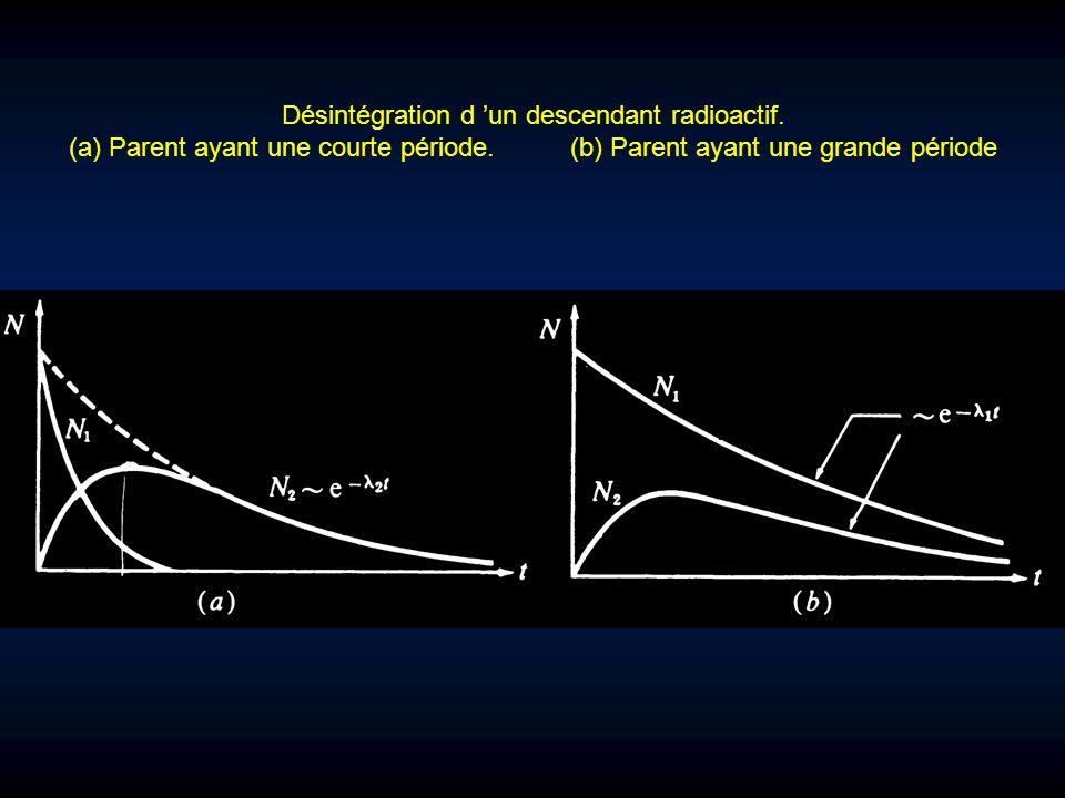 Désintégration d un descendant radioactif. (a) Parent ayant une courte période. (b) Parent ayant une grande période