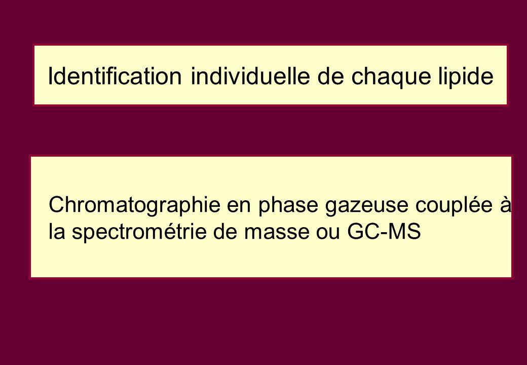 Identification individuelle de chaque lipide Chromatographie en phase gazeuse couplée à la spectrométrie de masse ou GC-MS