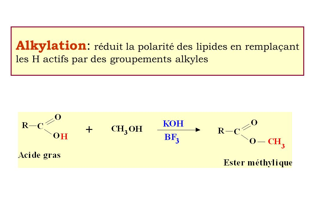Alkylation : réduit la polarité des lipides en remplaçant les H actifs par des groupements alkyles
