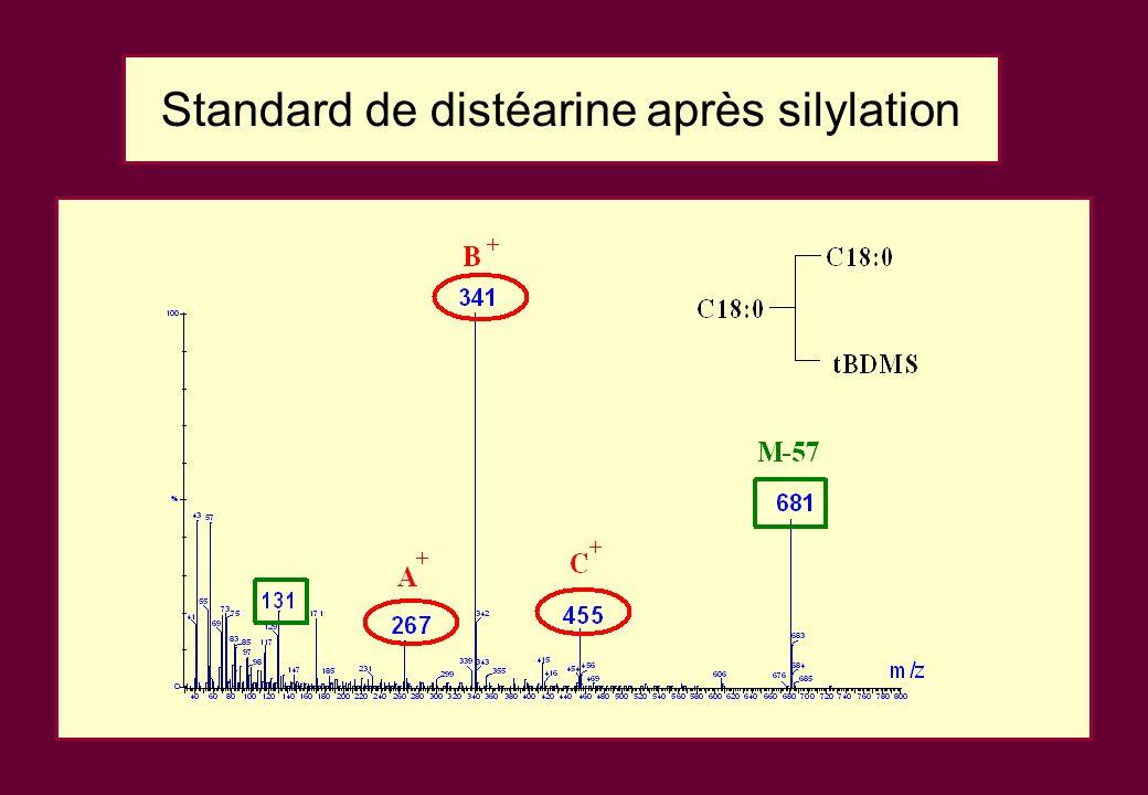Standard de distéarine après silylation
