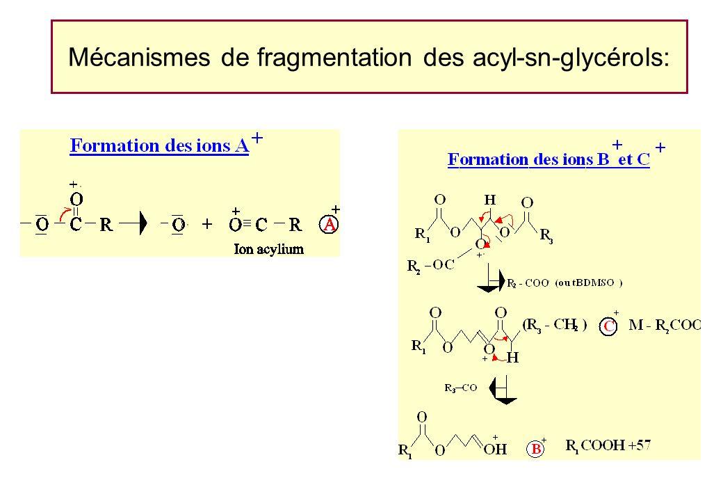 Mécanismes de fragmentation des acyl-sn-glycérols:
