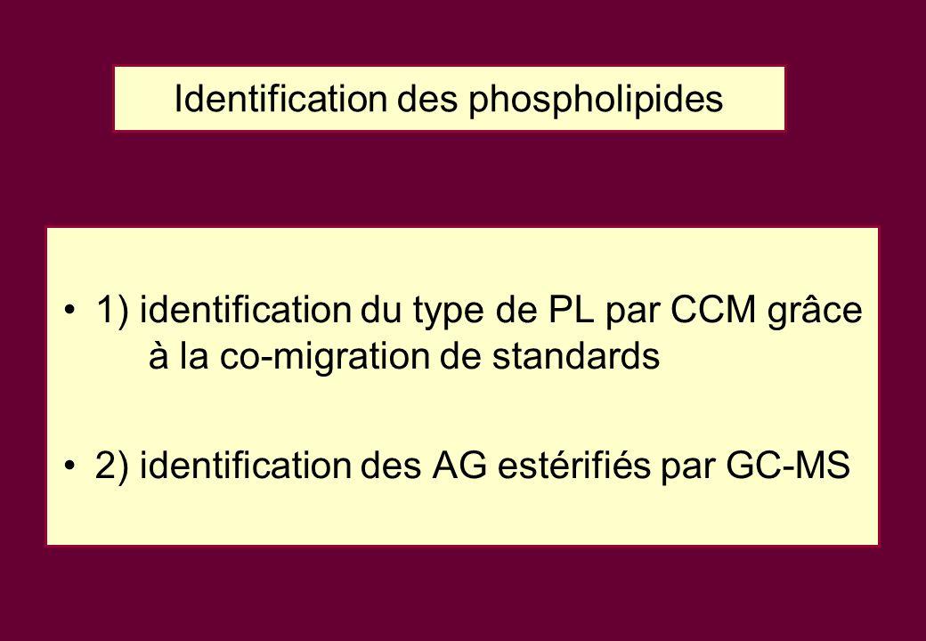 Identification des phospholipides 1) identification du type de PL par CCM grâce à la co-migration de standards 2) identification des AG estérifiés par GC-MS