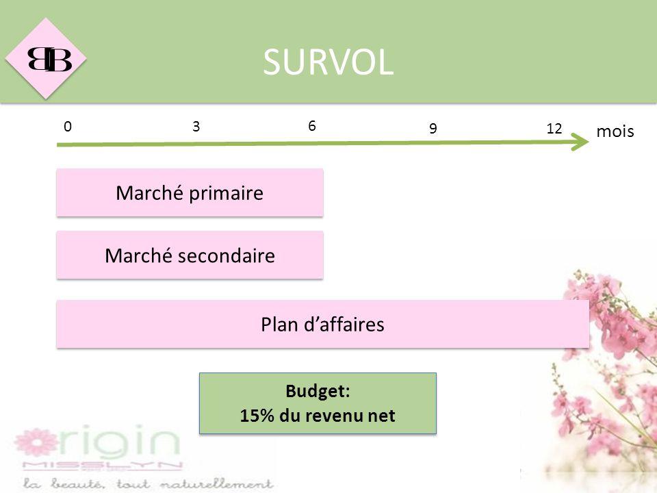 B B SURVOL Marché primaire Marché secondaire Plan daffaires mois 03 912 6 Budget: 15% du revenu net Budget: 15% du revenu net