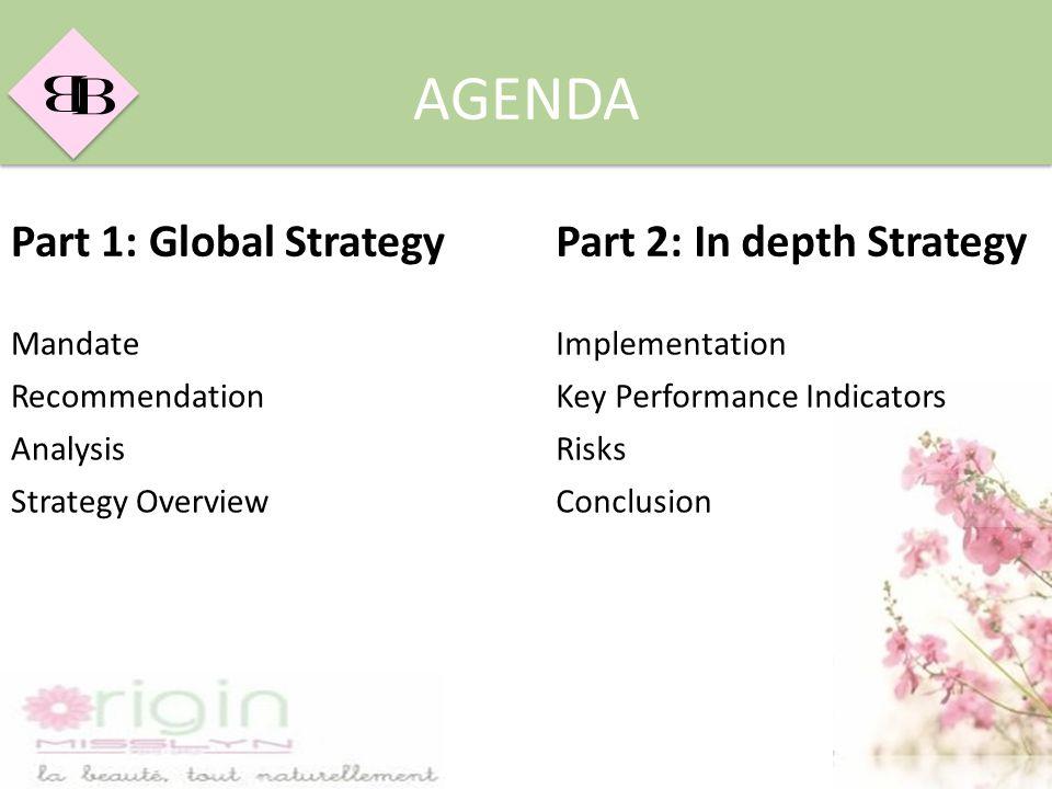 B B AGENDA Part 1: Global StrategyPart 2: In depth Strategy MandateImplementation RecommendationKey Performance Indicators AnalysisRisks Strategy Over