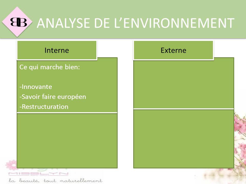 B B ANALYSE DE LENVIRONNEMENT Ce qui marche bien: -Innovante -Savoir faire européen -Restructuration Interne Externe