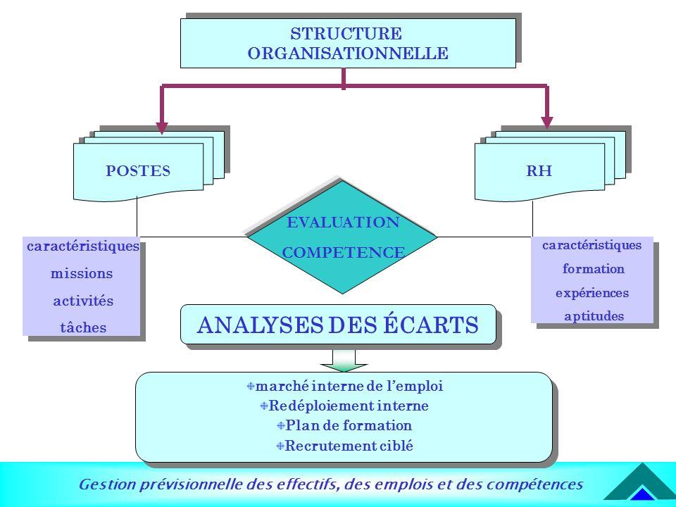 Gestion prévisionnelle des effectifs, des emplois et des compétences STRUCTURE ORGANISATIONNELLE STRUCTURE ORGANISATIONNELLE RH POSTES EVALUATION COMP