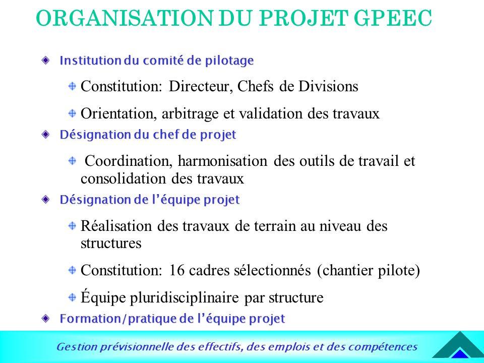 Gestion prévisionnelle des effectifs, des emplois et des compétences ORGANISATION DU PROJET GPEEC Institution du comité de pilotage Constitution: Dire