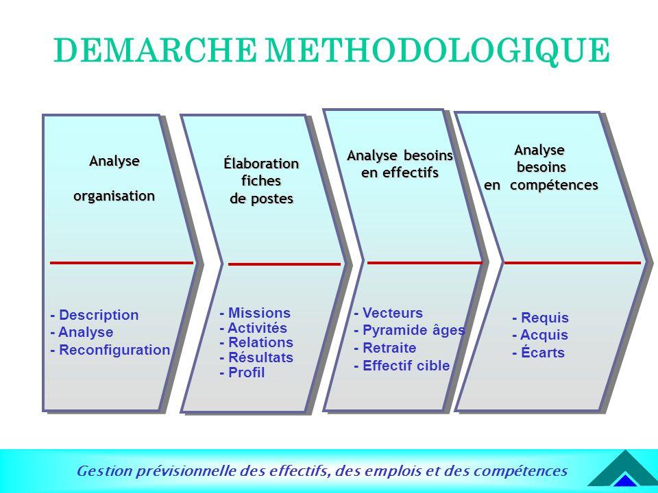 Gestion prévisionnelle des effectifs, des emplois et des compétences DEMARCHE METHODOLOGIQUE Analyse organisation - Description - Analyse - Reconfigur