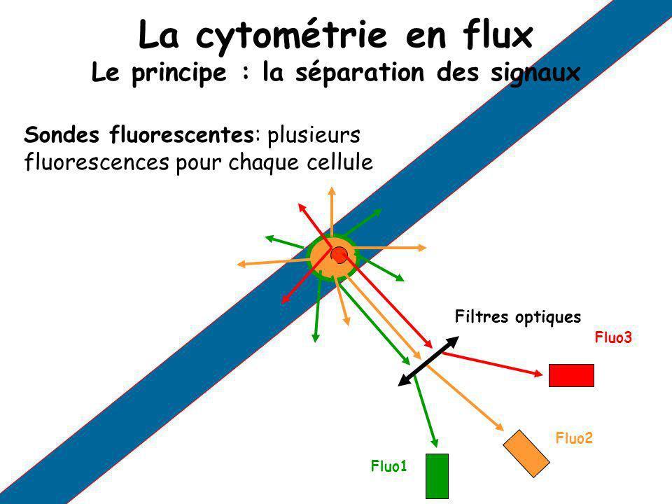 La cytométrie en flux Le principe : la séparation des signaux Sondes fluorescentes: plusieurs fluorescences pour chaque cellule Fluo1 Fluo2 Fluo3 Filt