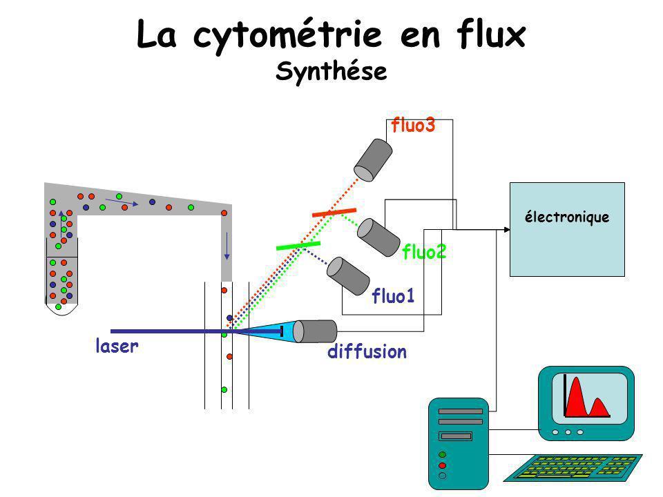 diffusion laser fluo1 fluo2 fluo3 électronique La cytométrie en flux Synthése