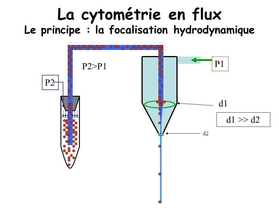 La cytométrie en flux Le principe : la focalisation hydrodynamique P2 d1 d2 d1 >> d2 P1 P2>P1