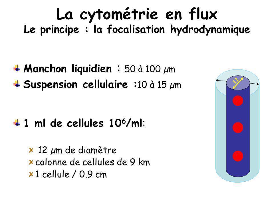 La cytométrie en flux Le principe : la focalisation hydrodynamique 100 1 ml de cellules 10 6 /ml: 12 µm de diamètre colonne de cellules de 9 km 1 cell