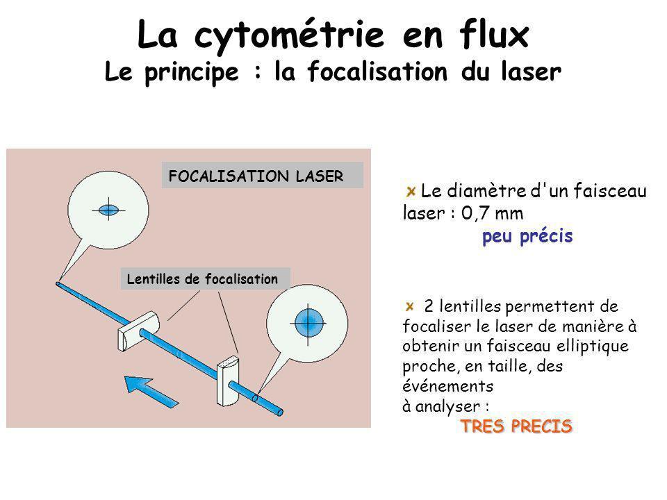 La cytométrie en flux Le principe : la focalisation du laser FOCALISATION LASER Lentilles de focalisation Le diamètre d'un faisceau laser : 0,7 mm peu