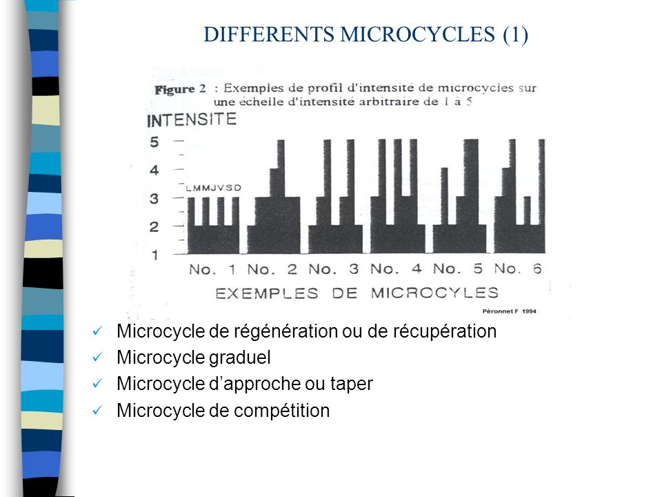 DIFFERENTS MICROCYCLES (1) Microcycle de régénération ou de récupération Microcycle graduel Microcycle dapproche ou taper Microcycle de compétition