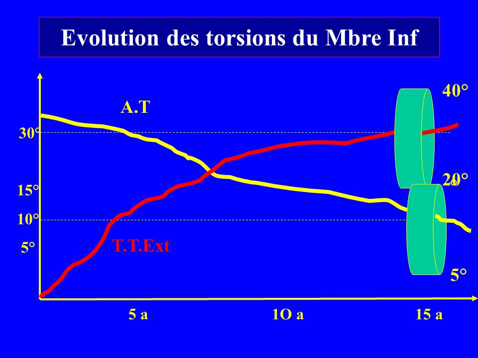 5 a1O a15 a 30° 15° 10° 5° 40° 20° ° 5° A.T T.T.Ext Evolution des torsions du Mbre Inf