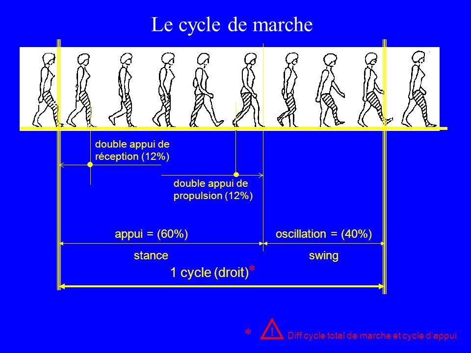 appui = (60%) stance oscillation = (40%) swing double appui de réception (12%) double appui de propulsion (12%) ! Diff cycle total de marche et cycle