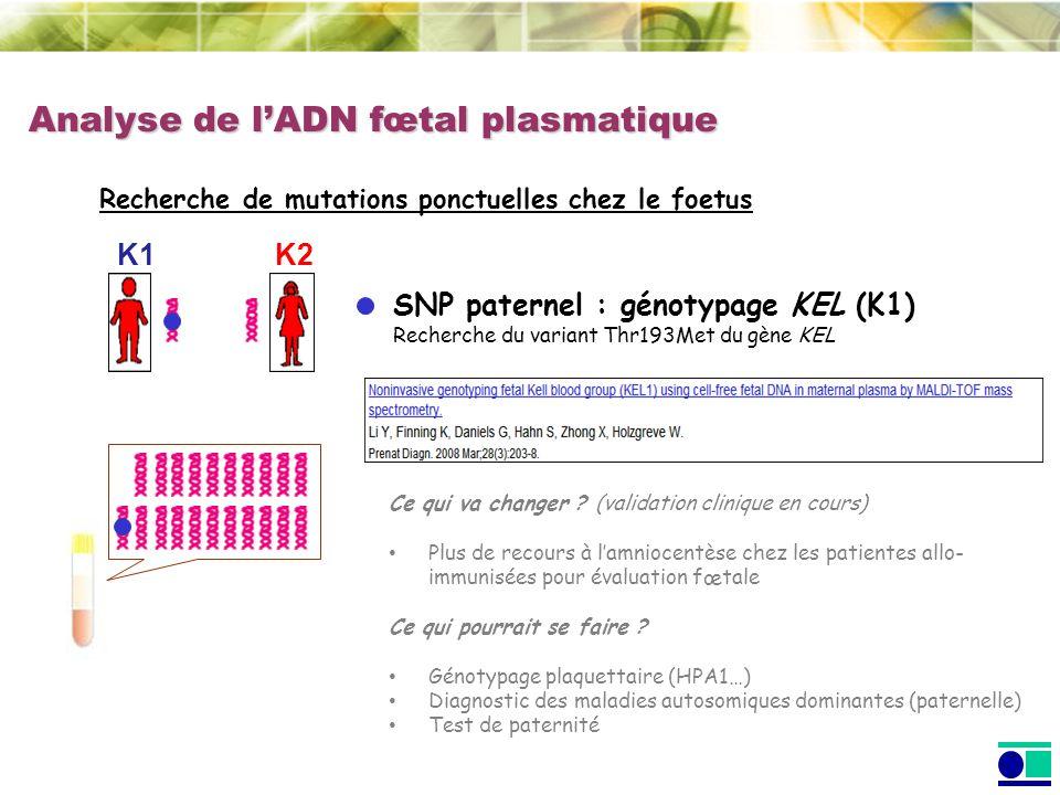 Analyse de lADN fœtal plasmatique Recherche de mutations ponctuelles chez le foetus SNP paternel : génotypage KEL (K1) Recherche du variant Thr193Met