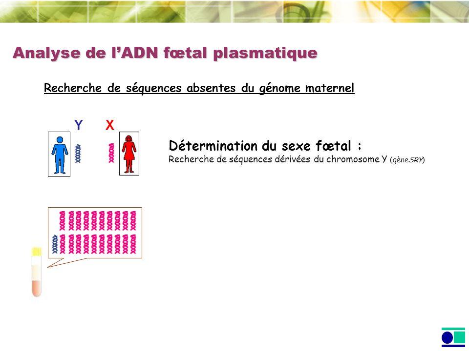 Analyse de lADN fœtal plasmatique Recherche de séquences absentes du génome maternel XY Détermination du sexe fœtal : Recherche de séquences dérivées