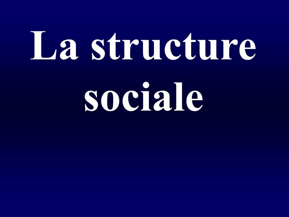 La structure sociale