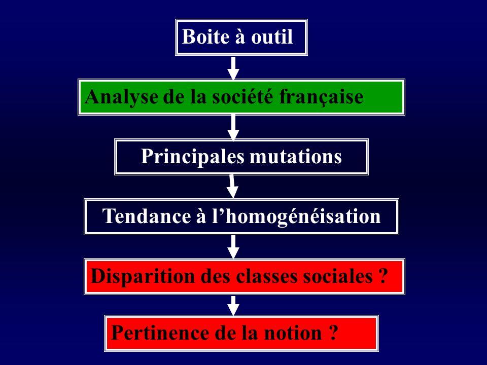 Boite à outil Analyse de la société française Principales mutations Tendance à lhomogénéisation Disparition des classes sociales .