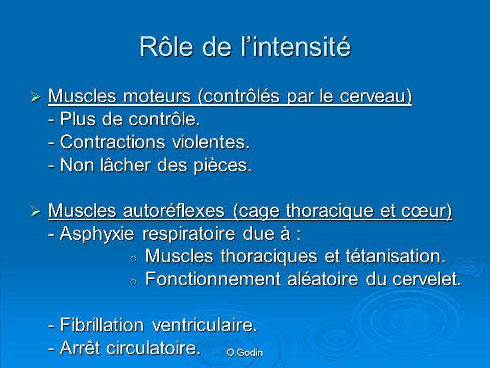 O.Godin Rôle de lintensité Muscles moteurs (contrôlés par le cerveau) Muscles moteurs (contrôlés par le cerveau) - Plus de contrôle.