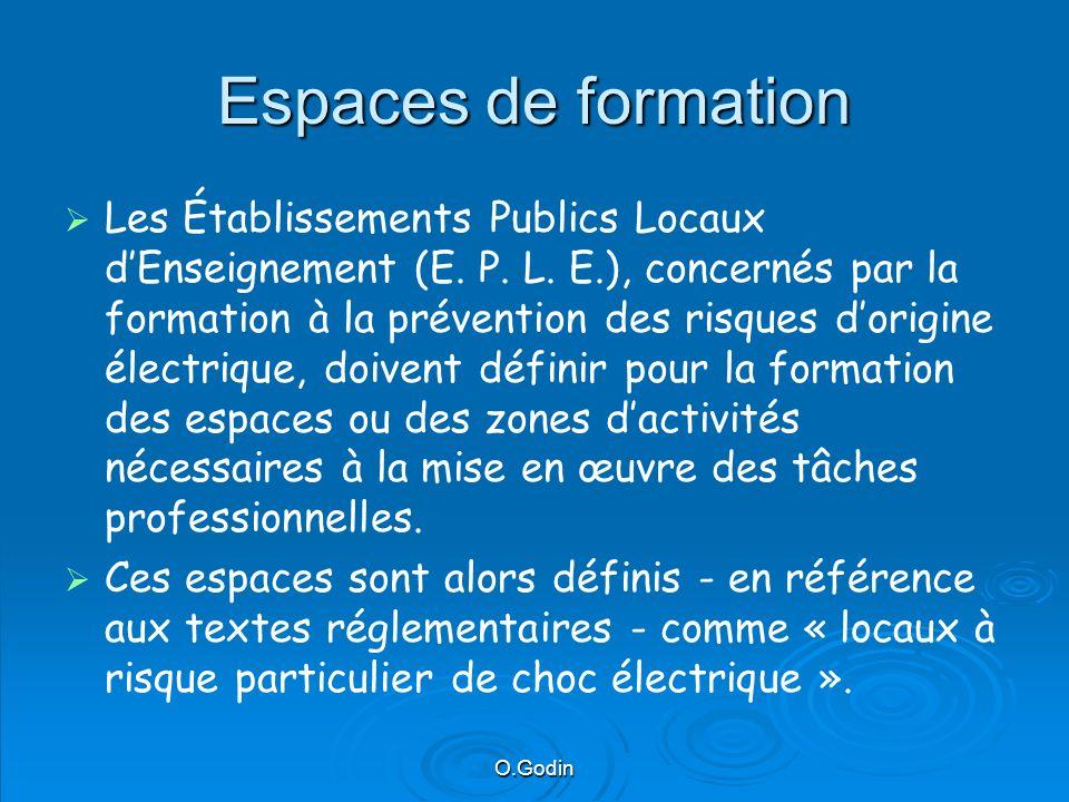 O.Godin Espaces de formation Les Établissements Publics Locaux dEnseignement (E.