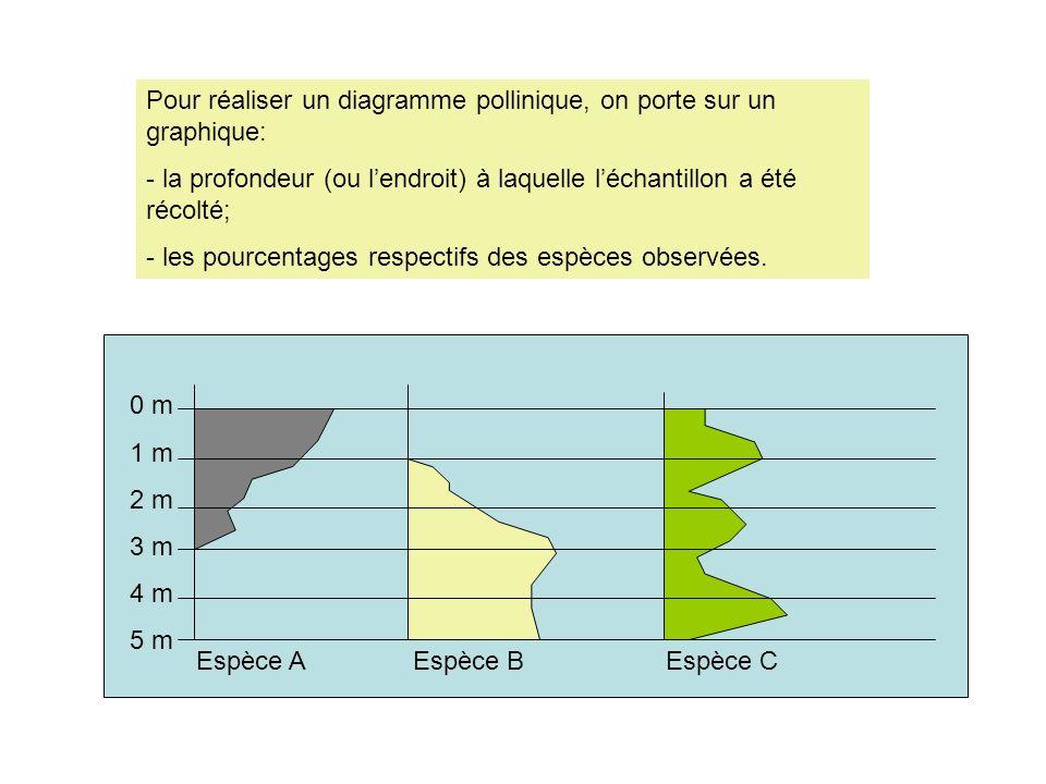 Pour réaliser un diagramme pollinique, on porte sur un graphique: - la profondeur (ou lendroit) à laquelle léchantillon a été récolté; - les pourcenta