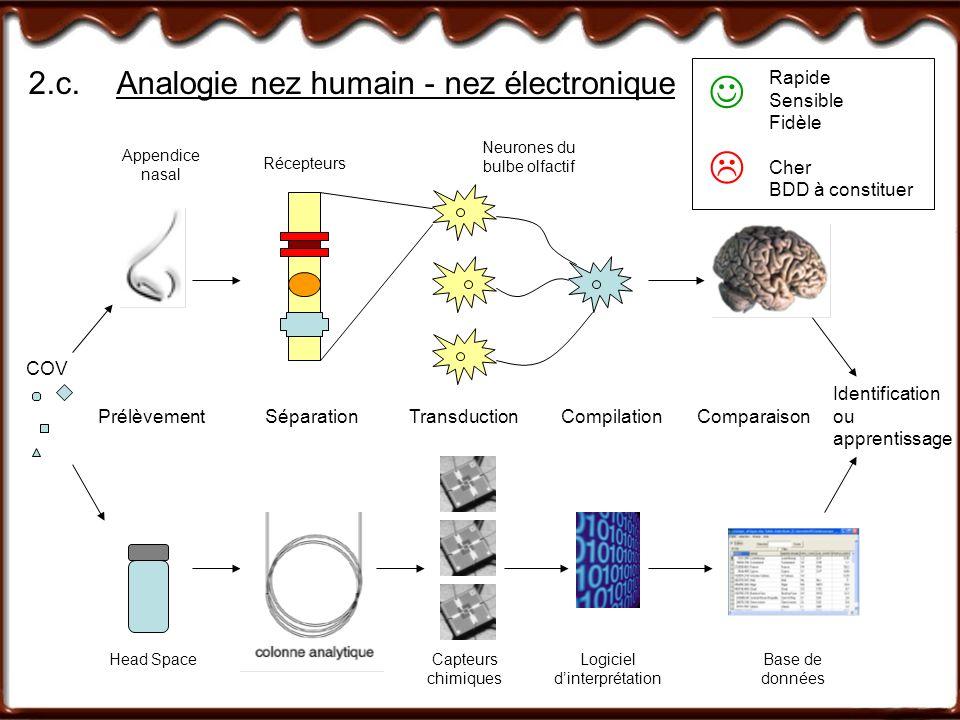 2.c.Analogie nez humain - nez électronique COV Identification ou apprentissage Prélèvement Appendice nasal Head Space Séparation Récepteurs Transducti