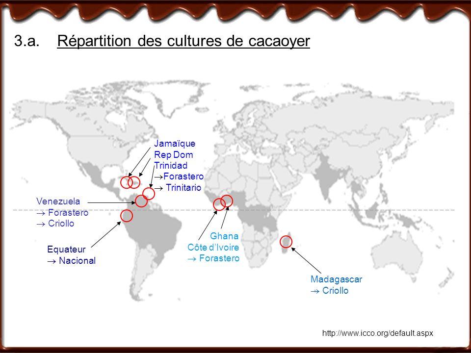 3.a.Répartition des cultures de cacaoyer http://www.icco.org/default.aspx Madagascar Criollo Ghana Côte dIvoire Forastero Equateur Nacional Venezuela