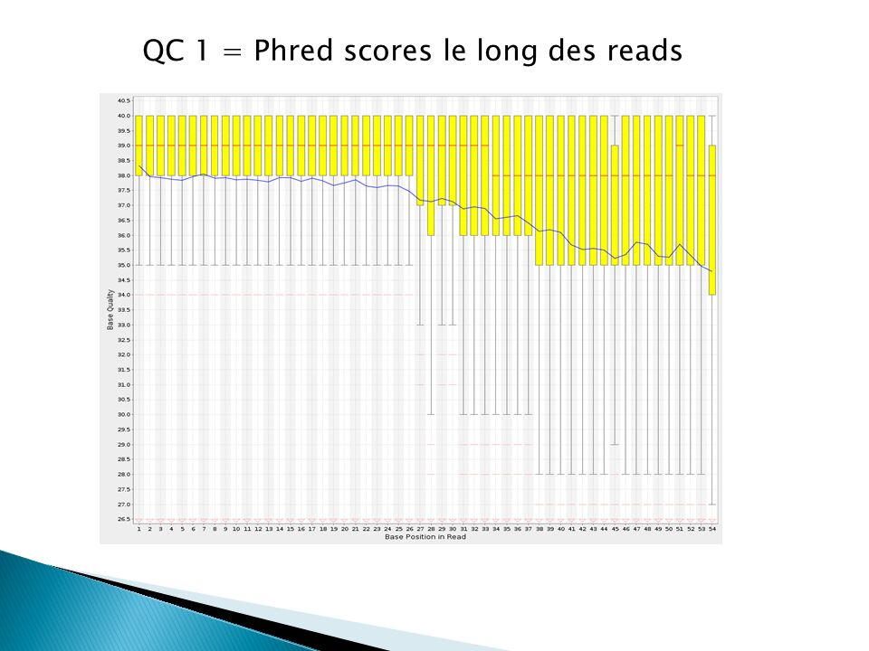 QC 1 = Phred scores le long des reads