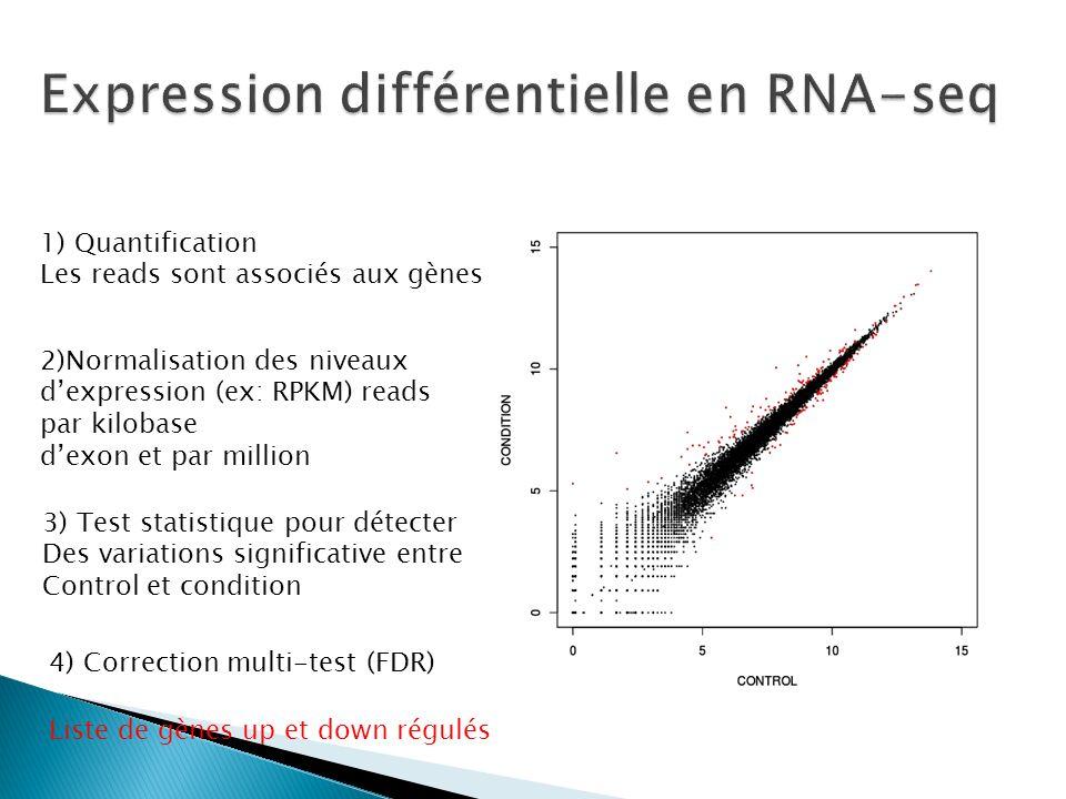 1) Quantification Les reads sont associés aux gènes 2)Normalisation des niveaux dexpression (ex: RPKM) reads par kilobase dexon et par million 3) Test