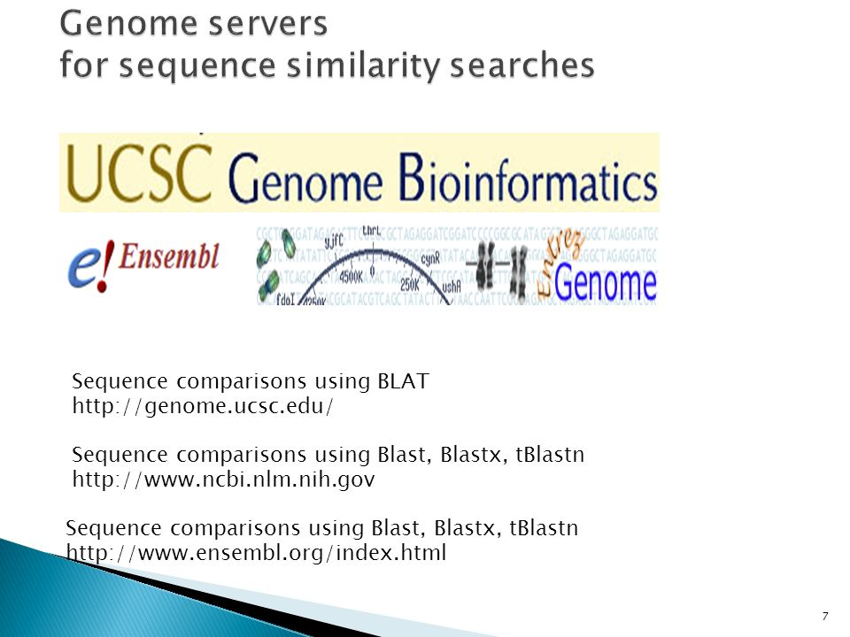 7 Sequence comparisons using BLAT http://genome.ucsc.edu/ Sequence comparisons using Blast, Blastx, tBlastn http://www.ensembl.org/index.html Sequence comparisons using Blast, Blastx, tBlastn http://www.ncbi.nlm.nih.gov