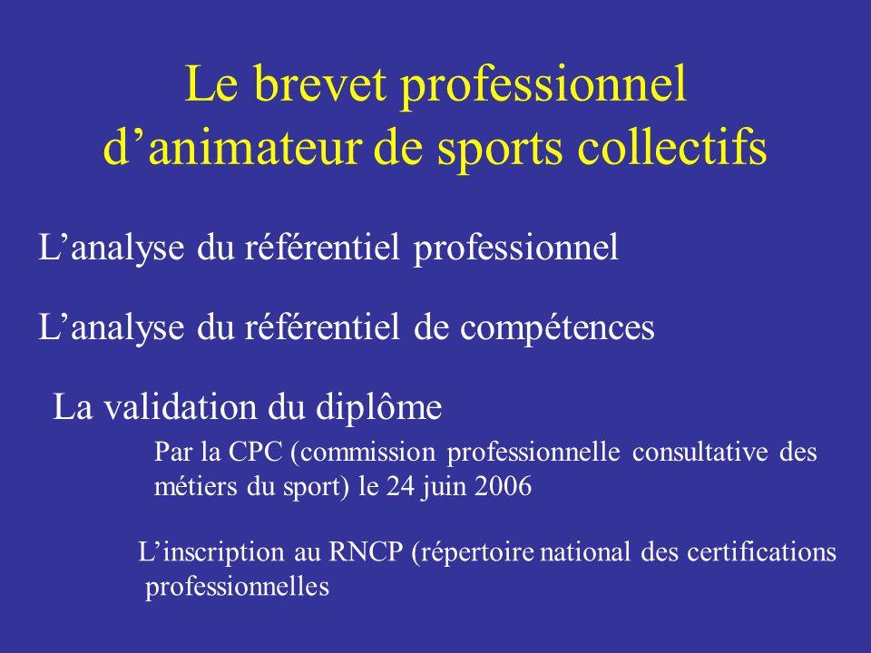 Le brevet professionnel danimateur de sports collectifs Lanalyse du référentiel professionnel Lanalyse du référentiel de compétences La validation du