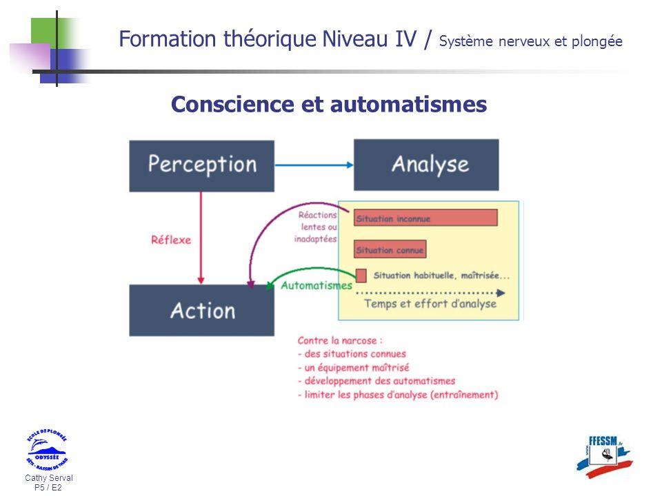Cathy Serval P5 / E2 Formation théorique Niveau IV / Système nerveux et plongée Conscience et automatismes