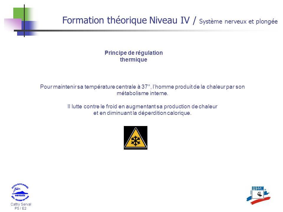 Cathy Serval P5 / E2 Formation théorique Niveau IV / Système nerveux et plongée Principe de régulation thermique Pour maintenir sa température central