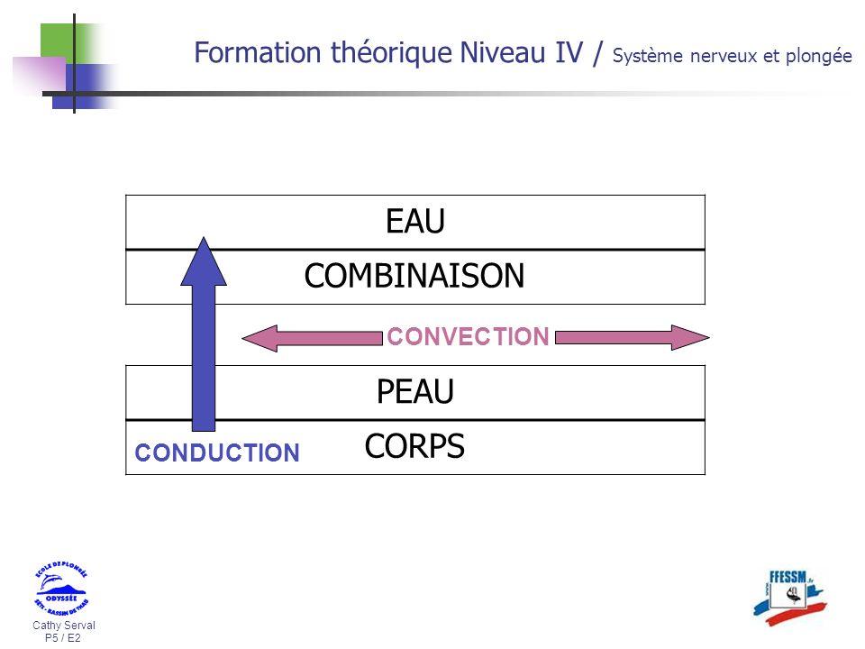 Cathy Serval P5 / E2 Formation théorique Niveau IV / Système nerveux et plongée EAU COMBINAISON PEAU CORPS CONVECTION CONDUCTION